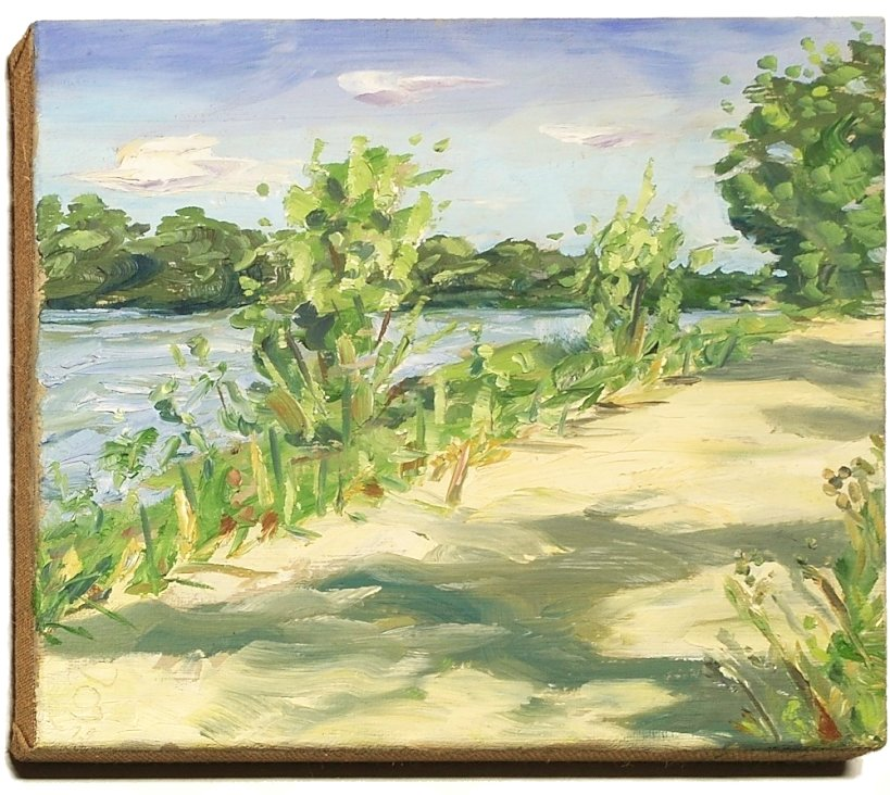 Stephan Ois - Malerei, Landschaft, Donau, Gemalt, Ölgemälde, zeitgenössischer Künstler Maler kaufen Wien