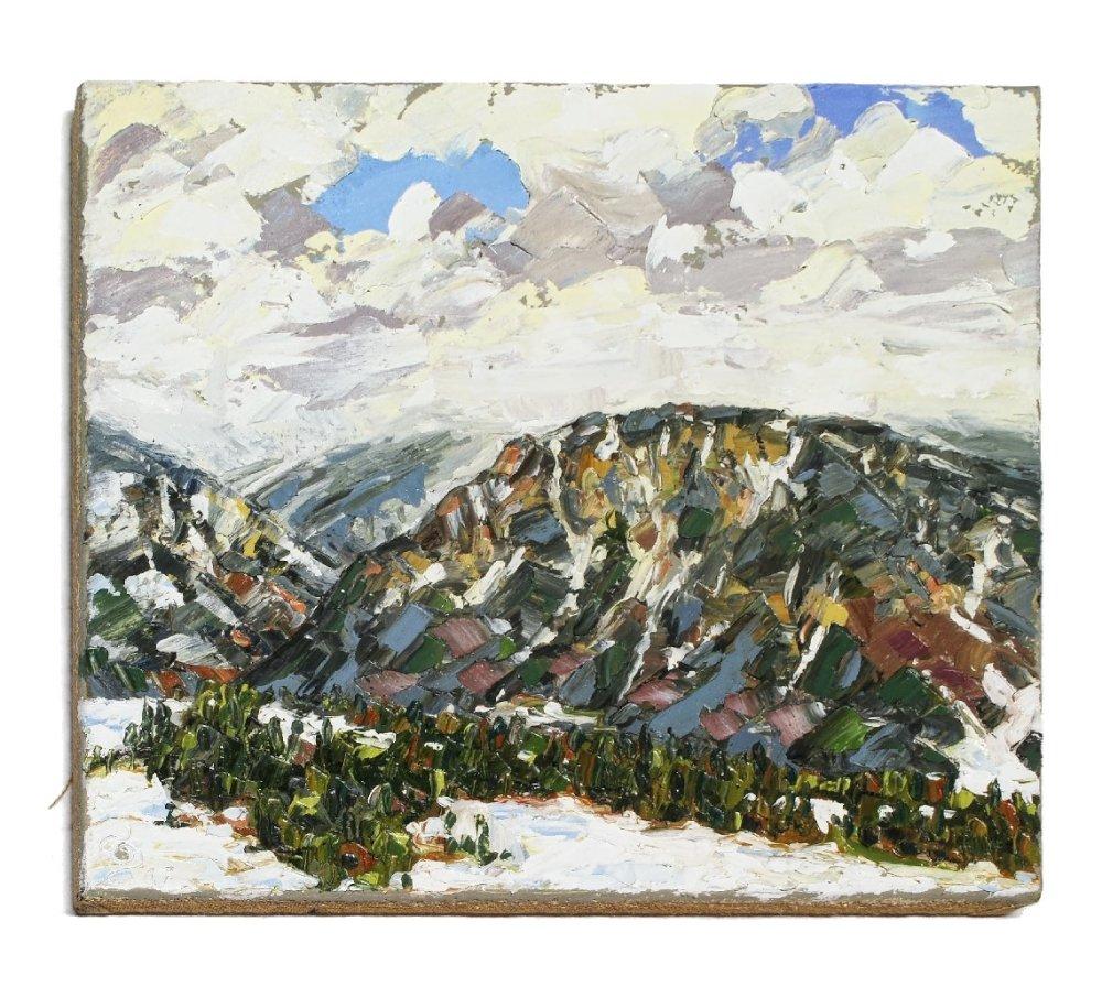 Stephan Ois - Landschaftsgemälde Öl, Semmering, Rax, Feichtaberg, zeitgenössische Malerei Landschaft Österreich kaufen